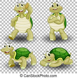 Set of cute turtle on transparent background