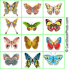 set of decorative butterflies on a white background