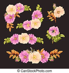 Set of decorative elements with dog rose