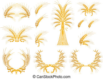 Set of Design Elements with Wheat, vector