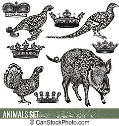 Set of detailed hand drawn animals