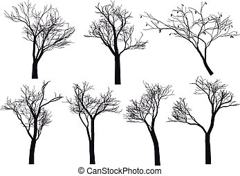 set of detailed tree silhouettes, vector