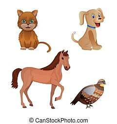 Set of different animal isolated on the white background. Cat, dog, horse, quail. Flat style. Vector illustration