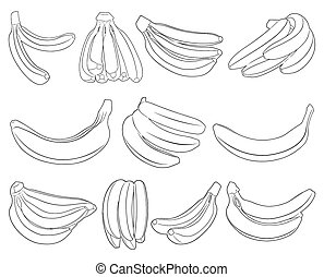Set of different bananas