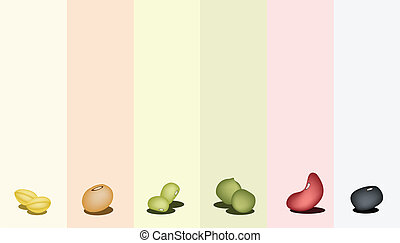 Set of Different Beans on Multicolor Background