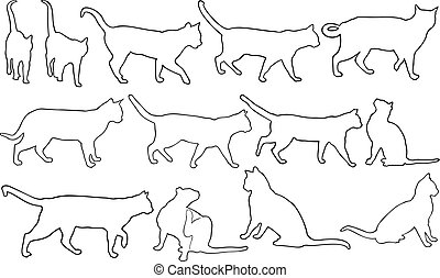Set of different cats