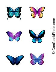 Set of different colored butterflies.