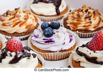 Set of different  cupcakes in a  box