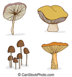Set of different forest mushrooms.