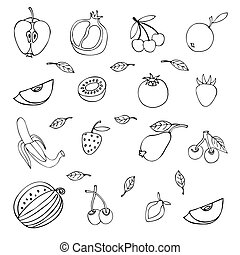 set of different fruits isolated on white background