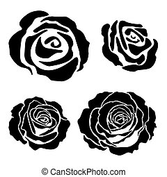 Set of different graphic roses