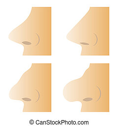 Set of Different Human Nose Isolated on White Background
