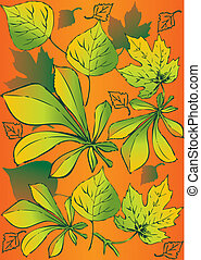 Set of different leaves.