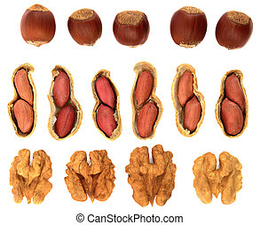 Set of different nuts isolated on white