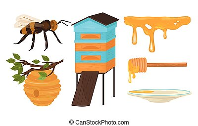 Set of different objects and stages for honey production ...