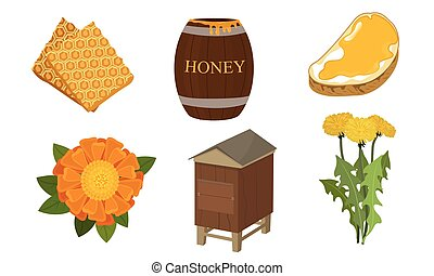 Set of different objects and stages of honey production ...