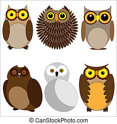 Set of different owls. Vector illustration