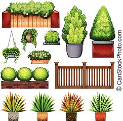 Set of different plants