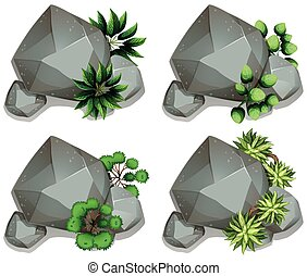 Set of different rocks with leaves