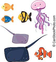 Set of different sea animals