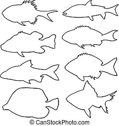 Set of different small fish silhouettes