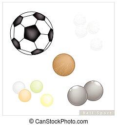 Set of Different Sport Balls on White Background