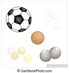 Set of Different Sport Balls on White Background