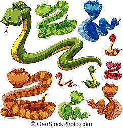 Set of different types of snakes