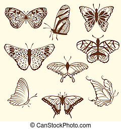 Set of differnet sketch butterfly
