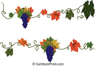 set of dividers with grapes