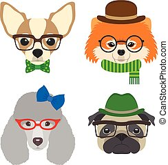 Set of dogs portraits. Chihuahua, pug, poodle, pomeranian glasses wearing glasses and accessories in flat style. Vector illustration of Hipster dogs for cards, t-shirt print, placard, avatars.