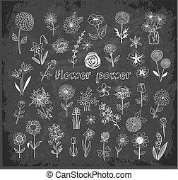 Set of doodle sketch flowers on blackboard background