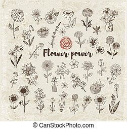 Set of doodle sketch flowers on vintage paper background