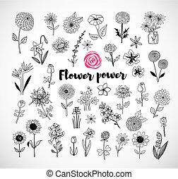 Set of doodle sketch flowers on white background. Vector illustration.