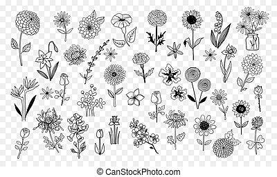 Set of doodle sketch flowers. Vector illustration.