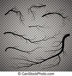 Set of dry twigs, on white background. Trees branch silhouette, isolated