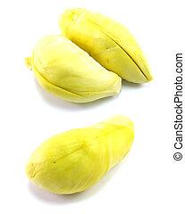 set of durian on white background