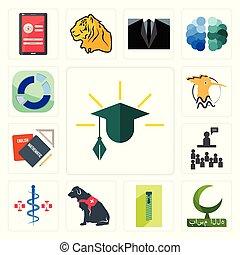 Set of education, bismillah, zipper, service dog, registe nurse, public relations, homework, hoopoe, sector icons
