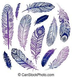 Set of Ehnic feathers