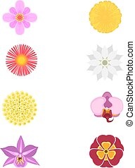 Set of eight flowers