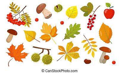 Set of elements for autumn design.
