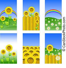 Set of elements for design, backgrounds