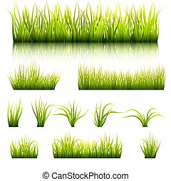 Set of elements of a green grass