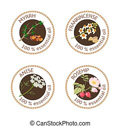Set of essential oils labels. Myrrh, anise, rosehip, frankincense
