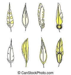 Set of feathers