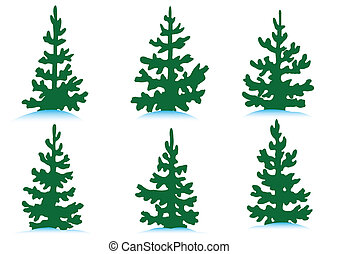Set of firs