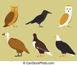 Set of flat birds, isolated on background. different tropical and domestic birds, cartoon style simple birds for logos.