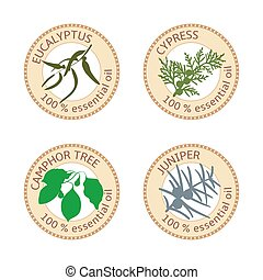 Set of flat essential oil labels. Eucalyptus, cypress, camphor tree, juniper. Logo collection. Vector illustration. Brown stamps, bright silhouettes. For stickers, tags advertising banners poster
