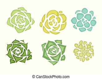 Set of flat succulents with a top view on a white background