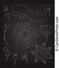 set of floral elements drawn in chalk on a blackboard, vector